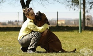 Кучето: Истинска терапия за своите стопани