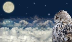 5 основни характеристики на сънищата