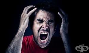 Кога човек е склонен да навреди на друг? Вижте какво показва най-скандалният социален експеримент (Снимки)