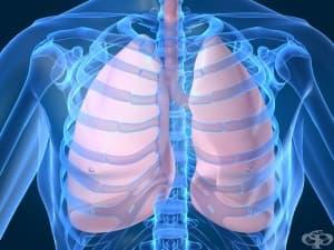 Латентна туберкулозна инфекция