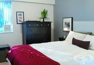9 стайни растения, които е добре да сложите в спалнята си
