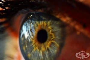 3 съвета как вашият хранителен режим може да подобри зрението ви