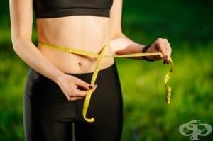 Използвайте глюкоманан за отслабване и контрол на кръвната захар и холестерола