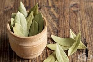 Пречистете ставите и облекчете болката с дафинов лист