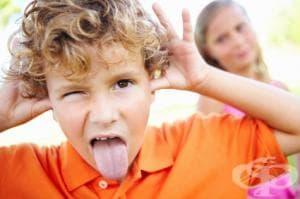 Описание на детска педагогическа стая