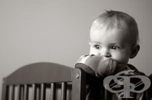 Адаптация на децата в приемното семейство