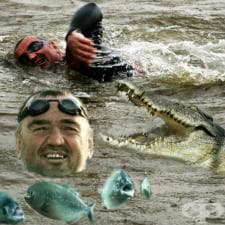Мартин Стрел – плуване в открити води