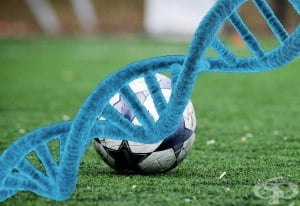 Значение на ДНК в спорта