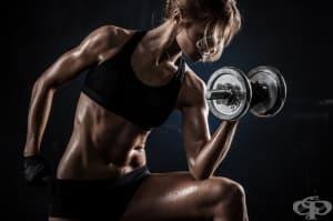 Как да си направим собствен фитнес у дома?