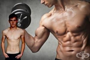 Как слабите хора могат лесно да покачват мускулна маса - отговорите