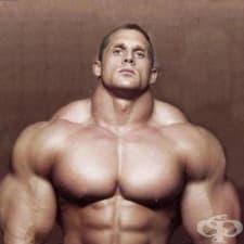 Как се тренира трапецовидния мускул?