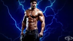 Топ 3 на упражненията за трапецовидния мускул