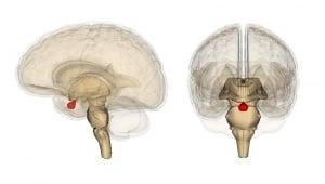 Хормонална терапия при дефицит на растежен хормон