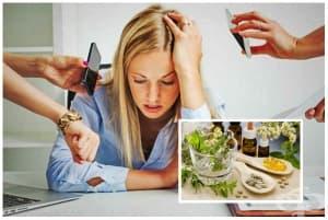 Лекарства и добавки срещу нервно напрежение и стрес