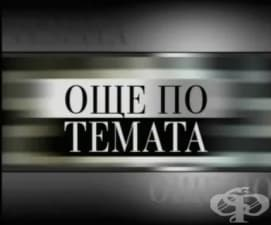 """Брой 3 на вестник """"Фрамар"""" представен в """"Още по темата""""  - ТВ Стара Загора"""