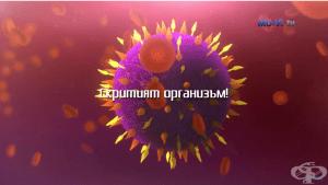 Доц. д-р Миглена Георгиева - Микробиомът, невидимият организъм