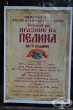 Фрамар TV представя: Лечебните свойства на пелина - Празник на пелина, село Змейово, 2011