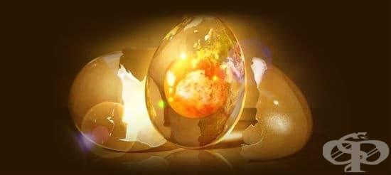 Екстракт от кокоши ембрион дава мощен тласък на здравето - изображение