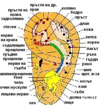 Акупунктура - изображение