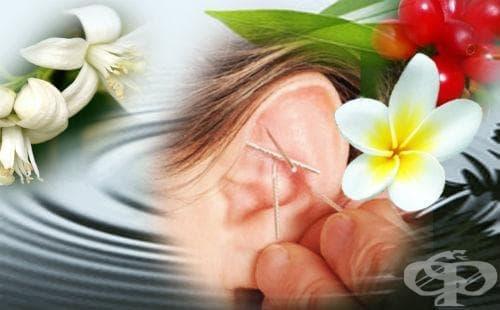 Аурикулотерапия - терапия чрез ухото - изображение
