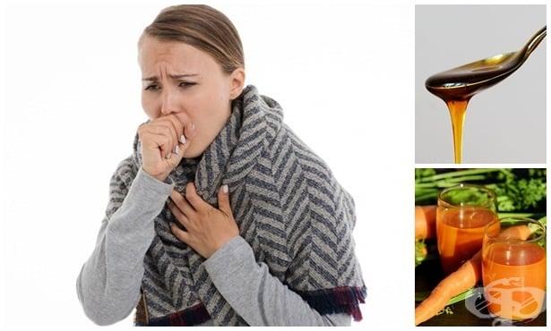 Билки и домашни средства при лечение на пневмония - изображение