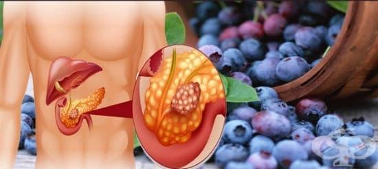 Билки при остър панкреатит - изображение