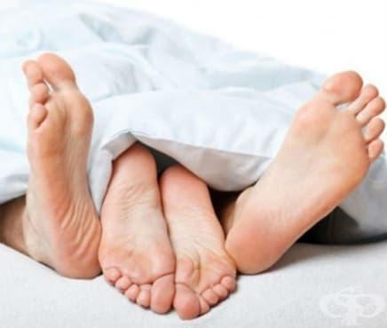 Билки за повишаване на потентността и половата мощ при мъжете - изображение