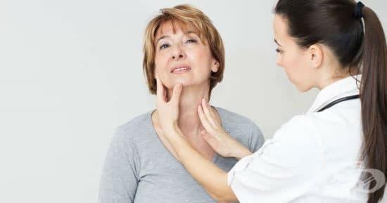 Билки при увеличена щитовидна жлеза - изображение