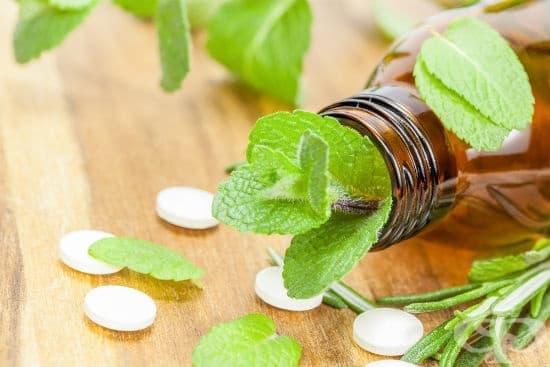 Добавки и билки при инфекциозна мононуклеоза - изображение