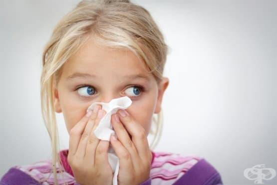 Хомеопатия за деца -  Синузити - изображение