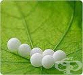 Хомеопатия за жени I - изображение