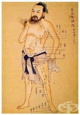 Основи на Китайската медицина - изображение