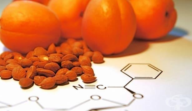 Лекува ли витамин В17 рак? - изображение