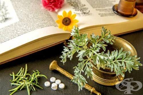 Фитотерапия - метод на лечение чрез билки - изображение