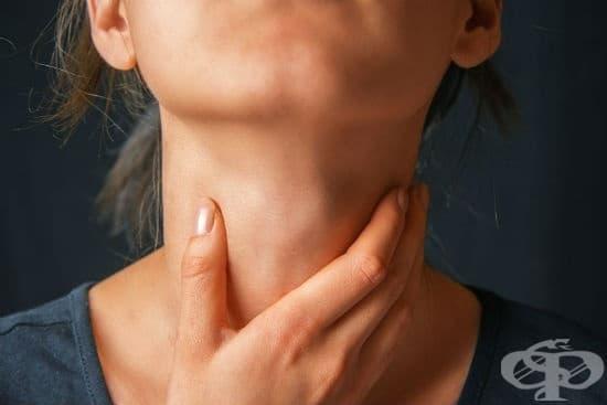 Природни средства и билки срещу възли на щитовидната жлеза - изображение