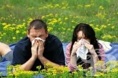 Природни средства срещу сезонни алергии - изображение