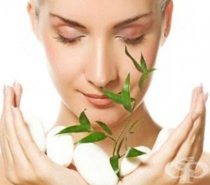 Съвети и естествени добавки полезни при болест на Хашимото - изображение