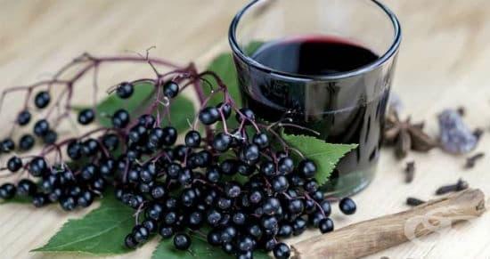 Сироп от черен бъз - полезни свойства и приготвяне у дома - изображение