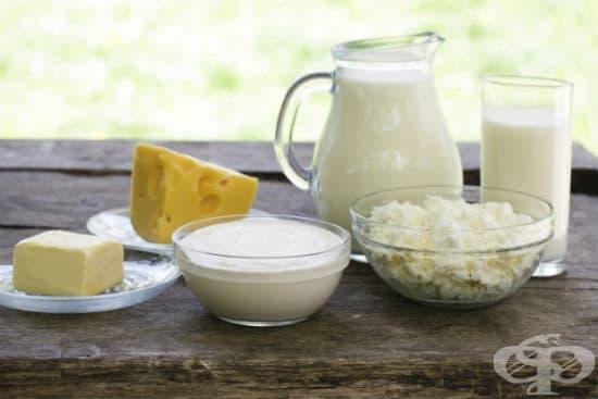 Защо са полезни млякото и млечните продукти? - изображение