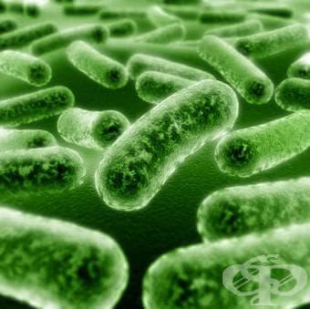 Антидиарични микроорганизми (пробиотици) (Antidiarrheal microorganisms)   ATC A07FA