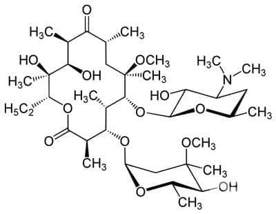 кларитромицин (clarithromycin) | ATC J01FA09