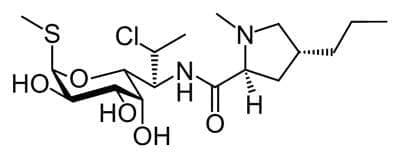 клиндамицин (clindamycin) | ATC J01FF01 - изображение