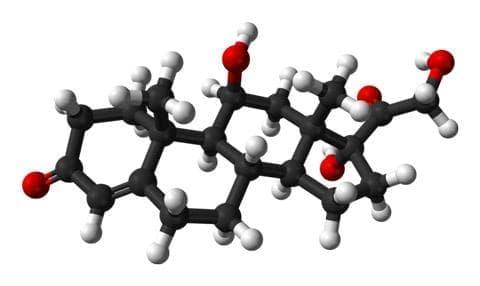 хидрокортизон (hydrocortisone) | ATC S02BA01 - изображение