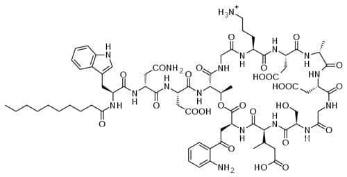 даптомицин (daptomycin) | ATC J01XX09 - изображение