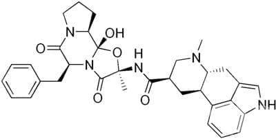 дихидроерготамин (dihydroergotamine) | ATC N02CA01 - изображение