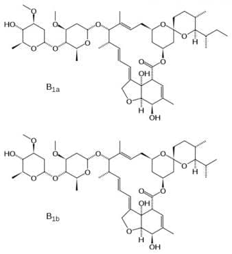 ивермектин (ivermectin) | ATC P02CF01 - изображение