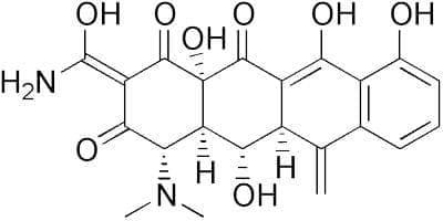 метациклин (metacycline)   ATC J01AA05 - изображение