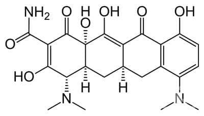 миноциклин (minocycline)   ATC J01AA08 - изображение
