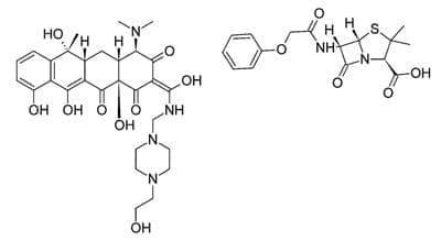 пенимепициклин (penimepicycline) | ATC J01AA10 - изображение
