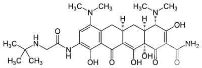 тигециклин (tigecycline)   ATC J01AA12 - изображение